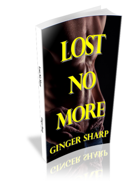 lost no more paperback Ginger's Erotic Contemporary Romance Books