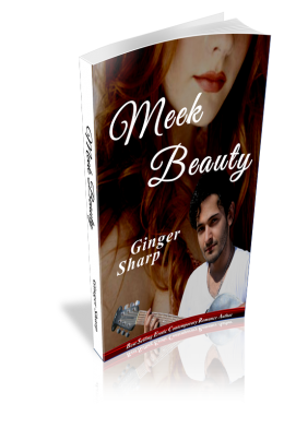 meek beauty papperback Erotic Contemporary Romance Books